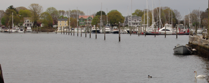 Harbor at Wickford