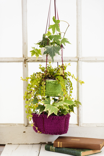 Botanical Bliss Hanging Baskets