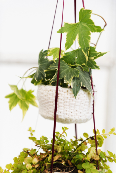 Botanical Bliss Hanging Baskets 3