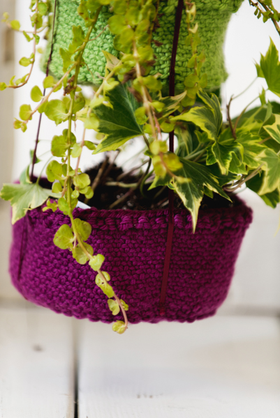 Botanical Bliss Hanging Baskets 4