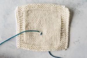 Step 3 Duplicate Stitch